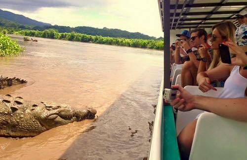 Cumbharjua Jetty Boat Cruise Crocodile Trip