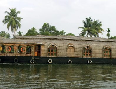 backwater-floating-house-boat-goa
